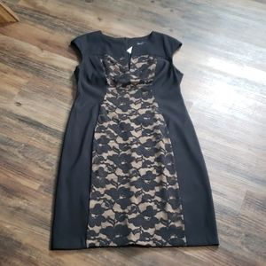NWT black cocktail dress with lace inset